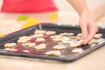 Female hand putting cookies on baking tray