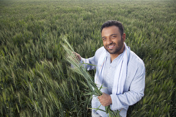 Portrait of an Indian man holding crop plant