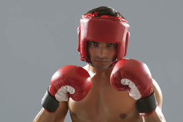Portrait of Indian male boxer wearing gloves and head protector isolated over gray background