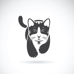 Vector of a cat on white background. Pet Animal.