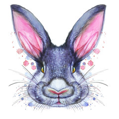 Painted drawing with watercolor portrait of an animal mammal rabbit hare in bright colors on a white background with splashes and divorces for pattern, design and decor, print