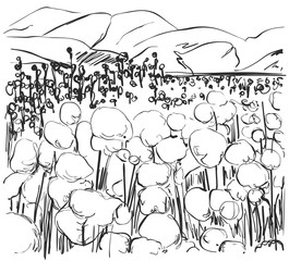 Hand drawn fields sketch and nature Landscape.