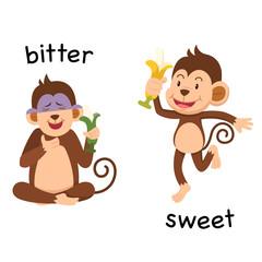 Opposite bitter and sweet illustration