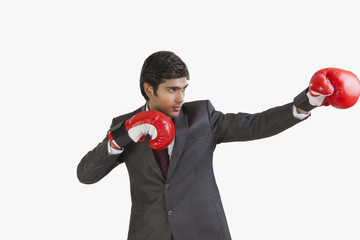 Business executive with boxing gloves
