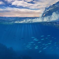 Aquatic Marine Scenery With Ocean Wave and Fish underwater