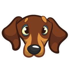 Cartoon Vector Illustration of Cute Purebred Dachshund Dog. Dog head icon. Isolated on white background
