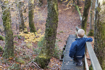 Boy standing on stairs in forest
