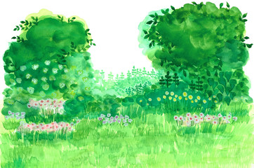 自分だけの花のある庭作り Gardening with your own flowers