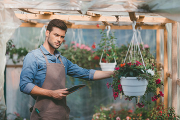 portrait of gardener holding tablet in hands while standing in greenhouse