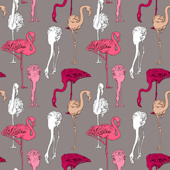 Seamless pattern with image of a bright Flamingo on a beige background. Vector illustration.