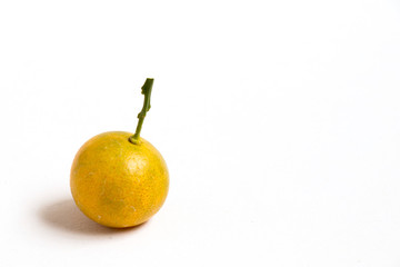 Closed up of kumquat orange that placed on white background