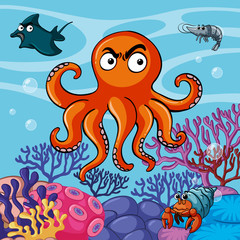 Octopus and other sea animals in the sea