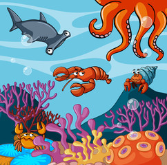 Sea animals under the ocean