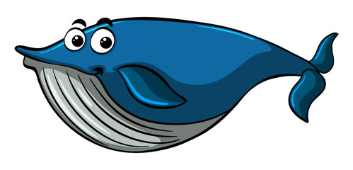 Blue whale with happy smile