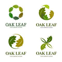 Oak leaf vector logo set. Logo template.