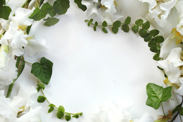 Floral frame made of fresh Iris white flowers and ivy (hedera) branches on white background. Flat lay, top view.