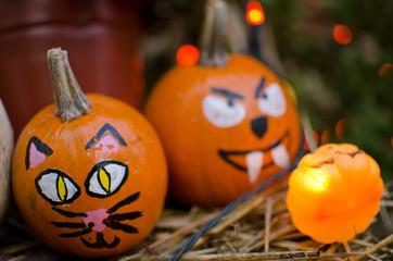 Painted Cat Face Halloween Pumpkins