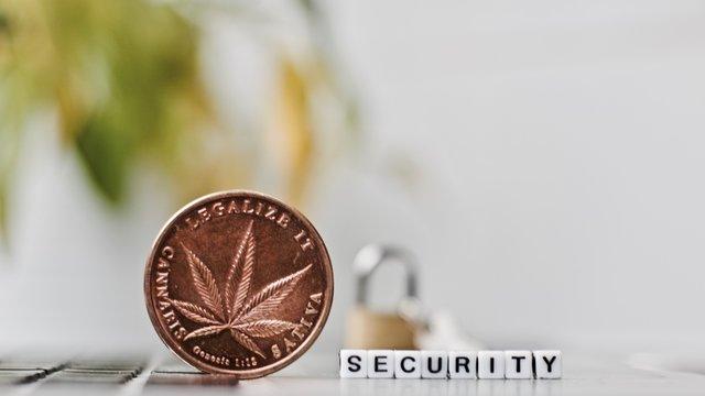 Marijuana security brass coin