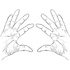ink sketch two hands holding something vector