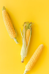 Corn on cobs on yellow background top view copyspace