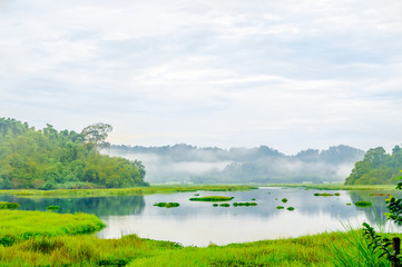 View on crocodile lake in the jungle of cat Tien national park in Vietnam