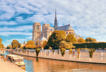 Wall Mural - Notre Dame Cathedral in Paris on a bright day in Autumn