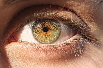 Close up of a hazel colored eye