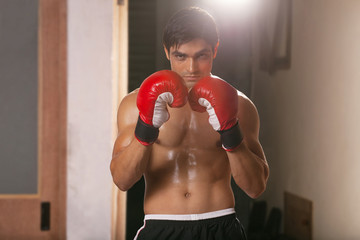 Portrait of young male boxer wearing boxing gloves in gym