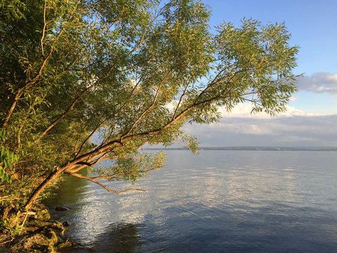 626-118 East Shore, Seneca Lake, Finger Lakes NY