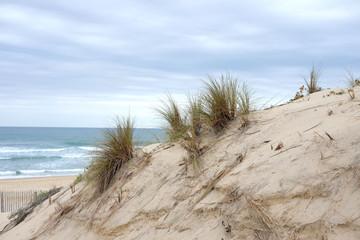 paysage de la dune de sable de la cote océan