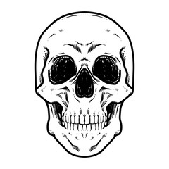 Skull Vector illustration, Hard Core Skull Vector Art, Collection Of Hand Drawn Skull