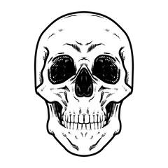 Skull Vector illustration, Hard Core Skull Vector Art, Collection Of Hand Drawn Skull