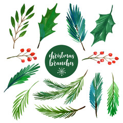 Christmas branches collection