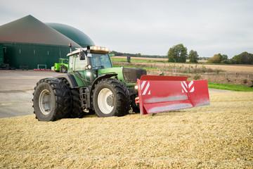Fototapete - Maisernte für Biogas - Traktor mit Planierschild beim Walzen auf einem Maishaufen