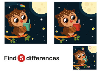 Find 5 differences education game for children, owl in the night. Vector illustration.