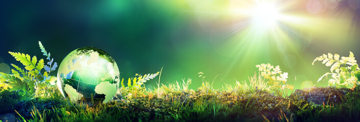 Green Globe On Moss - Environmental Concept..