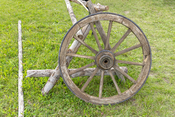 Old wooden cart wheel on a green meadow