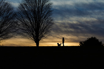 Silhouette woman with dog standing on land against stormy clouds during dusk