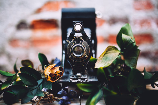 vintage camera with flowers