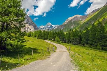 Wall Mural - Grossglockner Alpine Trailhead
