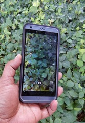 Holding A Mobile Phone With Camera Capturing The Green Leaf Landscape