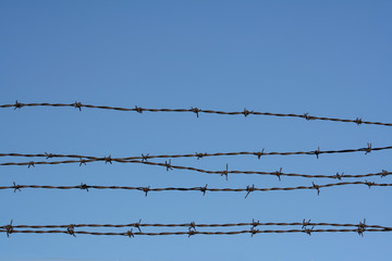 barbed wire. barb wire background, wallpaper.