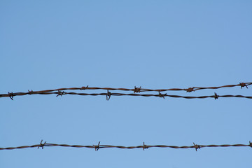 Horizontal Barbed Wires isolated against clear Blue Sky