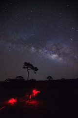 milky way galaxy and silhouette of tree with red light  at Phu Hin Rong Kla National Park,Phitsanulok Thailand