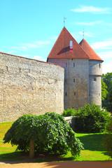 Wall Mural - Old city walls of Tallin