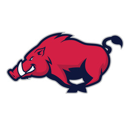 Wild hog or boar mascot