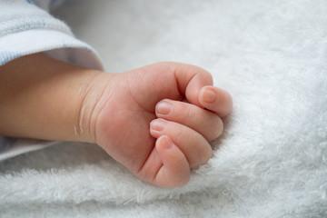 赤ちゃんの手(生後0ヶ月)
