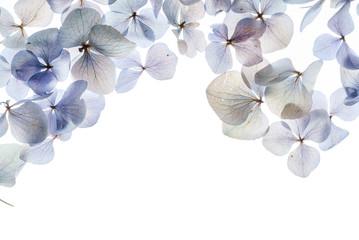 Zelfklevend Fotobehang Hydrangea floral composition