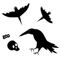 Silhouettes of witch ravens and skull. Halloween element design.