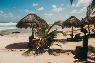 Tropical beach with umbrellas